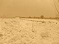 Uetersen Langes Tannen Schneehaufen.jpg
