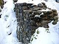 Uetliburg - Uto Kulm - Ruine Nordmauer 2012-10-29 16-03-44 (P7700).JPG