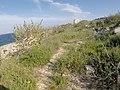 Unnamed Road, Ħaż-Żabbar, Malta - panoramio (5).jpg