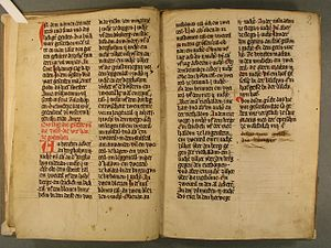Urbarium -  Urbarium codex from the Dominican Monastery of St. Katharina in Freiburg, began in 1309, written in Middle High German.