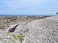 Urvaig, Tiree - geograph.org.uk - 7998.jpg