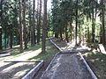 Utena, Lithuania - panoramio (45).jpg