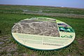 Verdronken Land van Saeftinghe 06.jpg