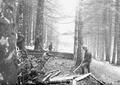 Verschiedene Arbeiten an einem Schützengraben - CH-BAR - 3240431.tif