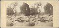 View in the Kauterskill Glove, Catskill Mountains, by London Stereoscopic View Co. 2.png