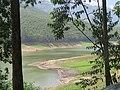 Views around Munnar, Kerala (67).jpg