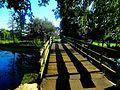 Vilas Park Woodland Bridge 2 - panoramio.jpg