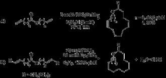 Ring-closing metathesis - Image: Villemin and Tsuji initial macrolide syntheses