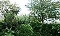 Villeneuve d'Ascq jardin Testraw.JPG