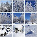 Vintermosaikk - Vestmarka (436703040).jpg