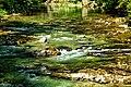 Vintgar Gorge (35643530312).jpg