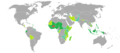Visa requirements for Burkinabe citizens.png