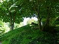 Vue d'ensemble du jardin Albert Kahn 3.JPG