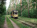 WS Waldstrecke Tw 28 2012-08-09 CLP 03.jpg