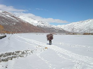 Wakhi people - The Wakhan Corridor under light snow, with a Wakhi man collecting firewood