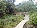 Walking Path Along Oakley Creek III.jpg
