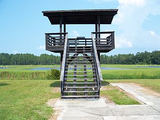 Welaka National Fish Hatchery - Observation tower at the Beecher Unit