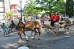 Welfenfest 2013 Festzug 013 Bauer im Jahreslauf.jpg