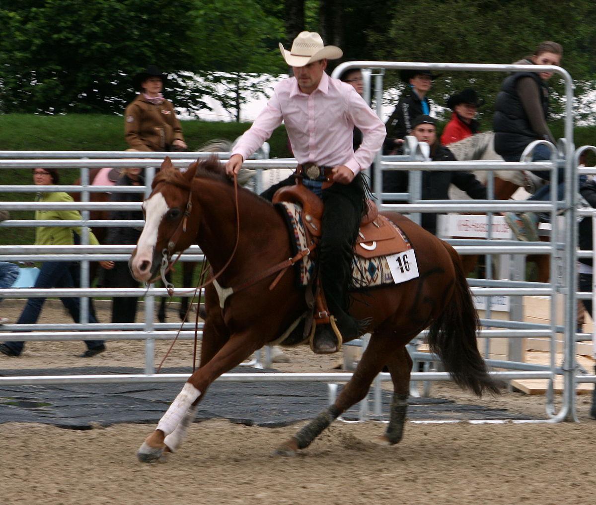 Westernreiten 002 Pferd International 2011.JPG