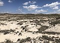 White River Formation Exposure, Weld County, CO.jpg