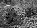 Wierzbna, park 2.jpg