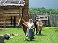 Wilderness Road - Fine Horses (7047959703).jpg