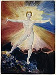 William Blake - Albion Rose - from A Large Book of Designs 1793-6.jpg