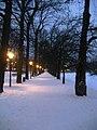 Winter in Den Haag (5254196607).jpg