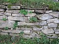 Wooden Church Birth of Virgin Mary in Ieud Deal 2011 - Stone Wall with Inscriptions.jpg