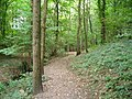Woodland path in 'Fairy Glen' - geograph.org.uk - 1492159.jpg