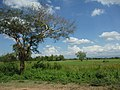 Yamethin, Myanmar (Burma) - panoramio (4).jpg