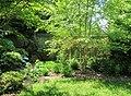 Yard - panoramio (42).jpg