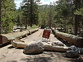 Yosemite-Creek-Campground-Bridge.jpg