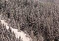 Zugspitze Tour 楚格峰旅途 - panoramio.jpg