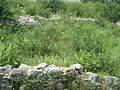 (By @ibneAzhar)-Sirkup Remains-Taxila 2000 yrs Old-Pakistan (2).JPG