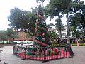 Árbol Navideño en la Plaza Mariño de Turmero - panoramio.jpg