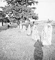 Åsa gravfält - KMB - 16001000017175.jpg