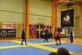 Örebro Open 2015 153.jpg