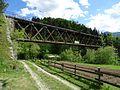 Žel most čez Savo Bohinjska Bistrica (1).JPG