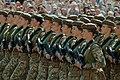 Военный парад в честь Дня Независимости Украины Military parade in honor of the Independence Day of Ukraine (44194240712).jpg