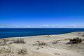 Дюны.jpg