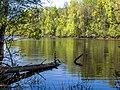 Озеро Подборное около села Русское.jpg