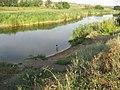 Река Волчья возле Павограда - panoramio.jpg