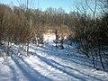 Свердловина Пн- 54 - panoramio.jpg