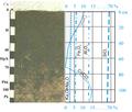 Схематичний графік перерозподілу продуктів ґрунтотворення у профілі чорнозему звичайного.png