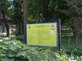 Хотинський парк-пам'ятка садово-паркового мистецтва.JPG