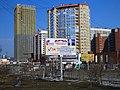 Щит НОД за поправки к конституции Екатеринбург 24 марта 2020 года.jpg