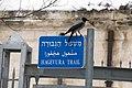 שלט לרחוב ומאחוריו מוזיאון אסירי המחתרות.jpg