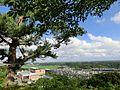 おもかる大師より市街地を望む - panoramio.jpg