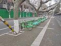 临沂市的共享单车.jpg